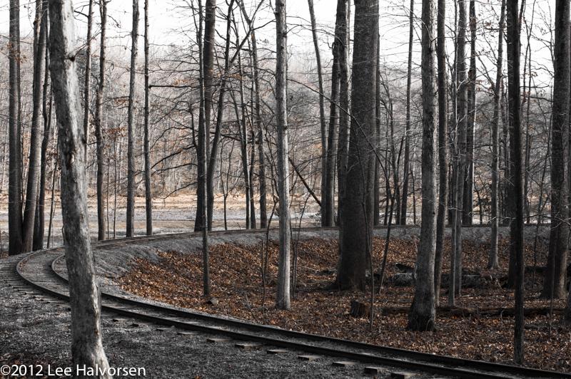 Tracks At Burke Lake