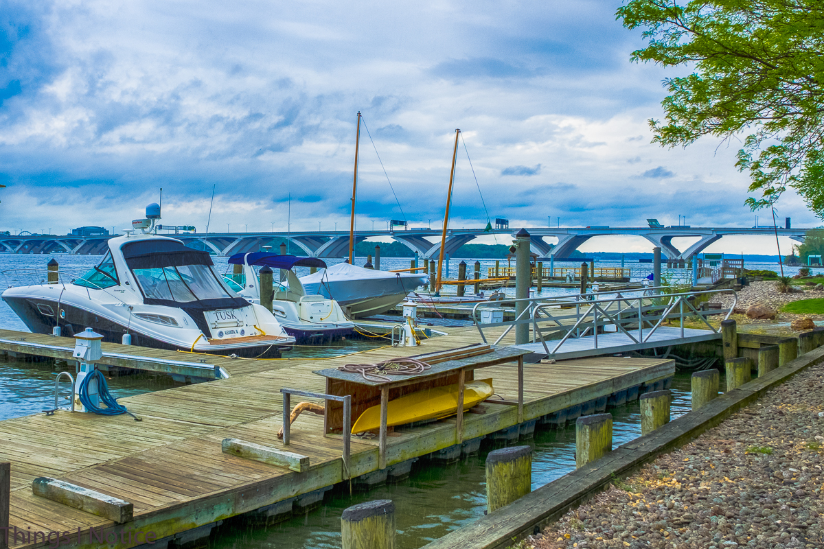 Alexandria Docks