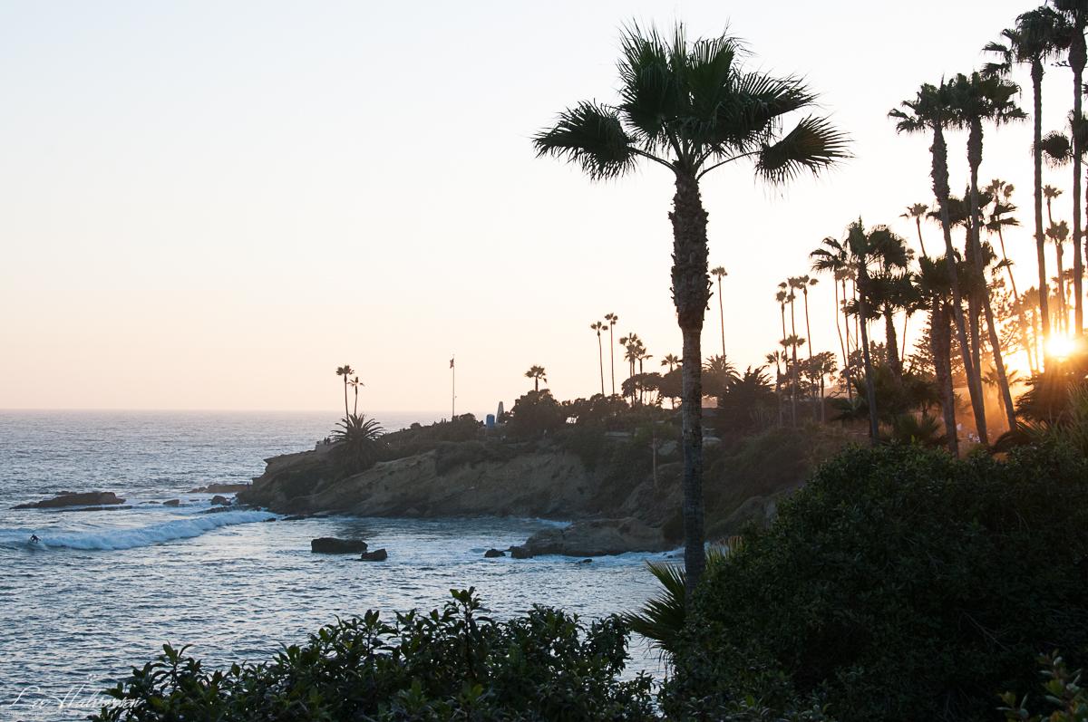 Edie's Southern California