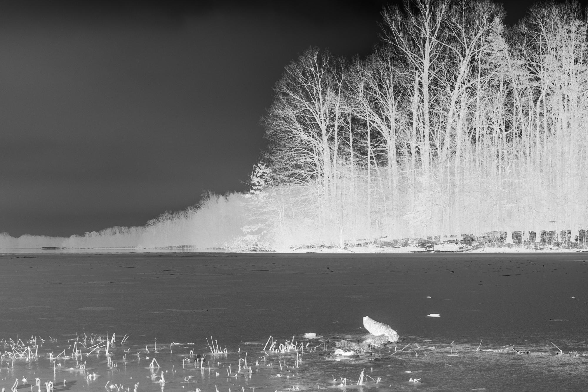 Inverted Burke Lake, VA