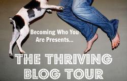 Blog Tour Sidebar