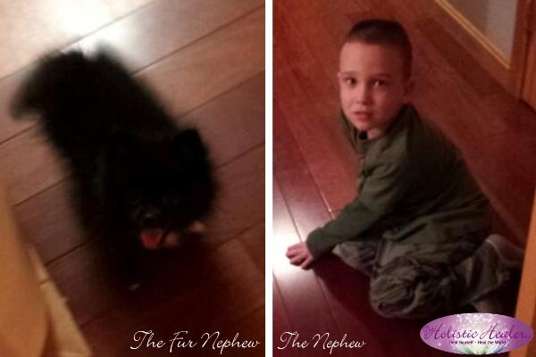 Fur Nephew and Nephew | Intuitive Ellen