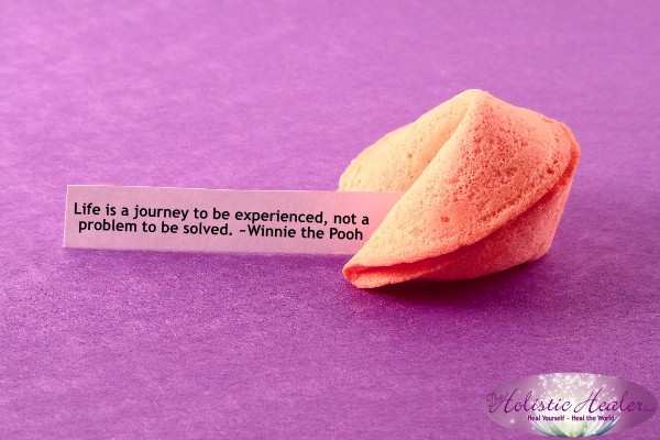 Life is a journey to be experienced, not a problem to be solved. ~Winnie the Pooh