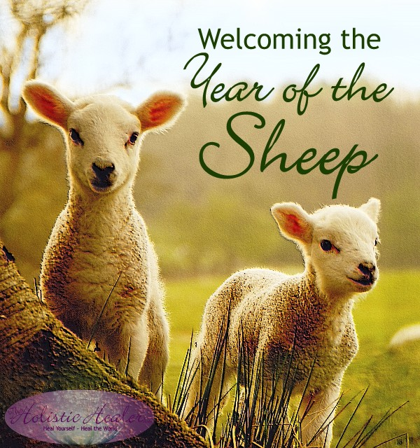 Welcoming the Year of the Sheep | Intuitive Ellen