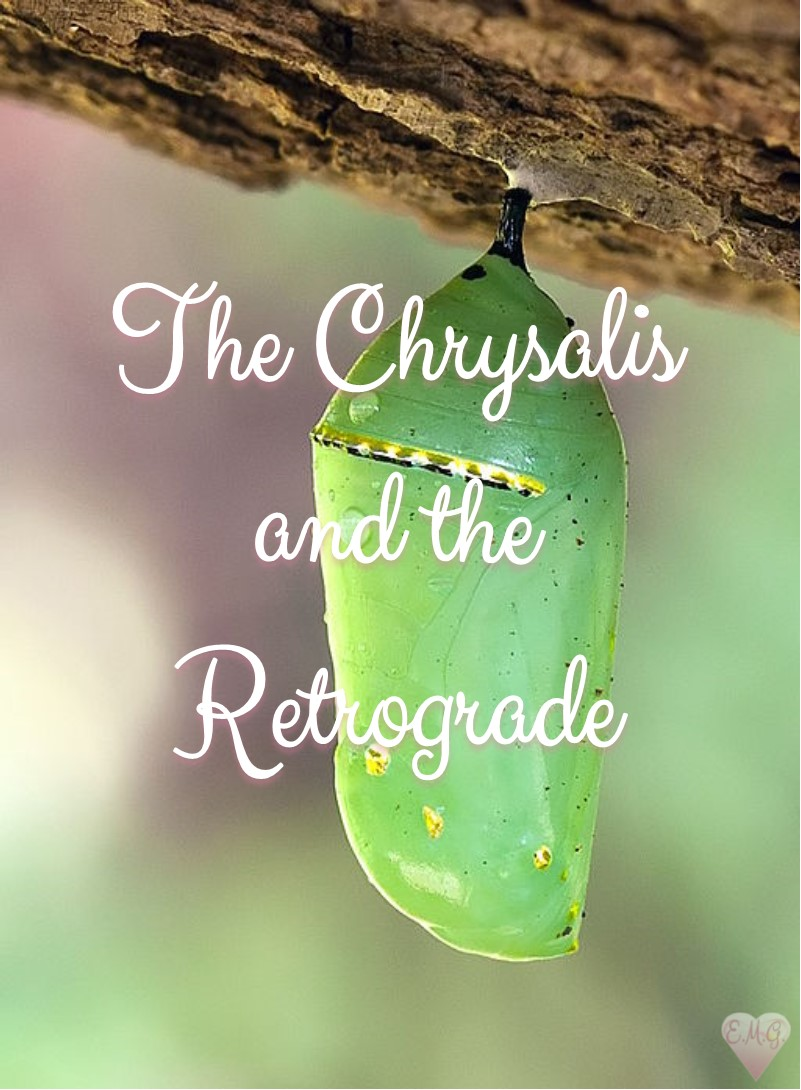 They Chrysalis and the Retrograde