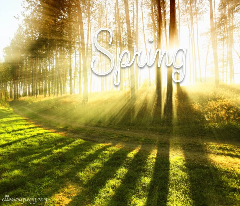 The Light of Spring