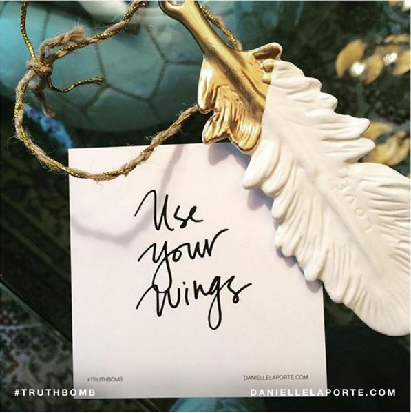 Use Your Wings. Fly. That's why you have them.