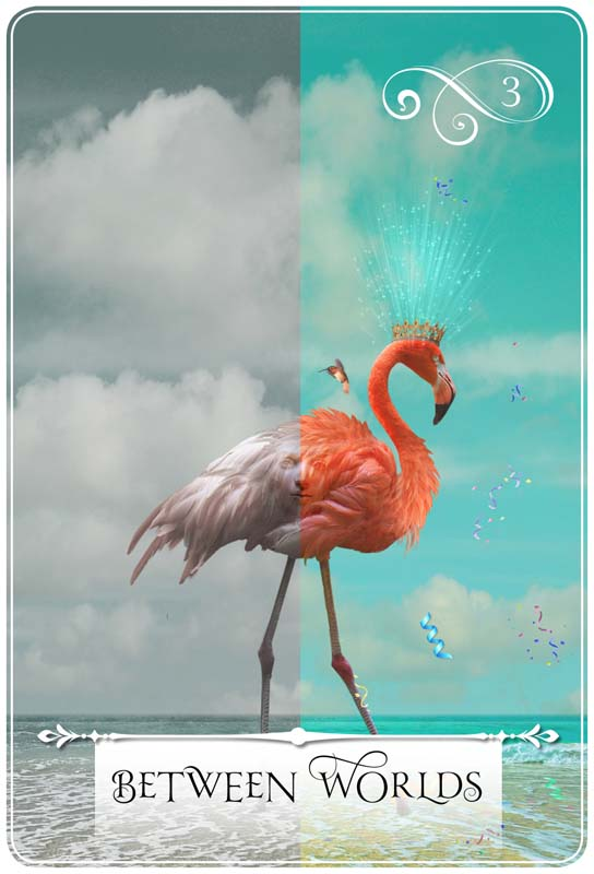 Between Worlds: Weekly guidance for August 29 - September 4, 2016 ~ Card from Colette Baron-Reid's Wisdom of the Oracle deck