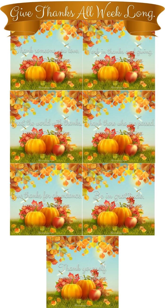 Give Thanks All Week Long ~ A Week of Thanksgiving is seven days of giving thanks during Thanksgiving week 2016.