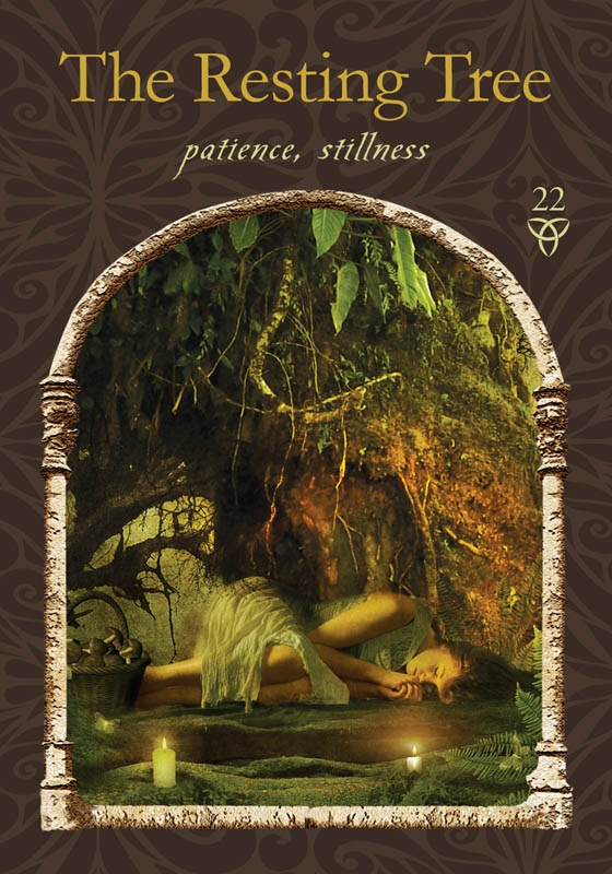 The Resting Tree from Wisdom of the Hidden Realms oracle cards by Colette Baron-Reid, published by Hay House.