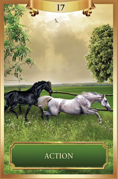 Action ~ Energy Oracle Cards created by Sandra Anne Taylor and Jena DellaGrottaglia, published by Hay House Lifestyles.