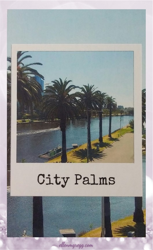 Daily Divination: 4 May, 2017 ~ City Palms from New Age Hipster InstaOracle, created and published by New Age Hipster.