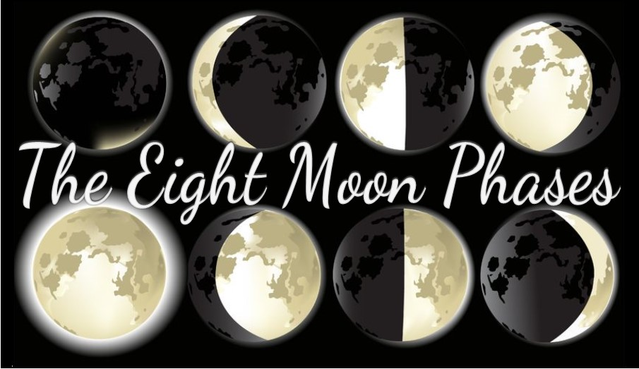 The Eight Moon Phases ~ Intuitive Ellen
