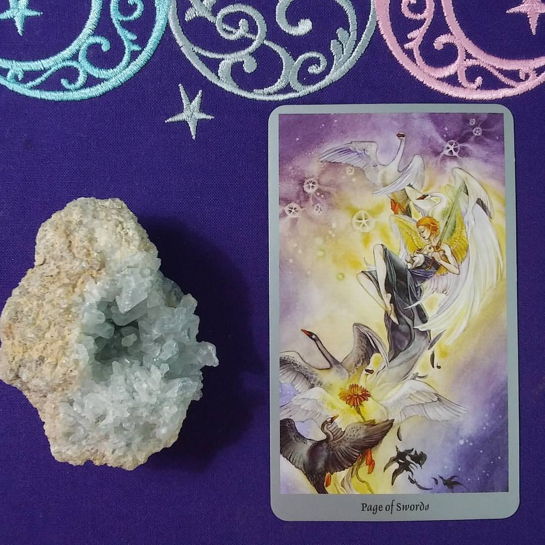 Hope Rising ~ A post by Ellen M. Gregg :: Intuitive ~ Page of Swords from Shadowscapes Tarot