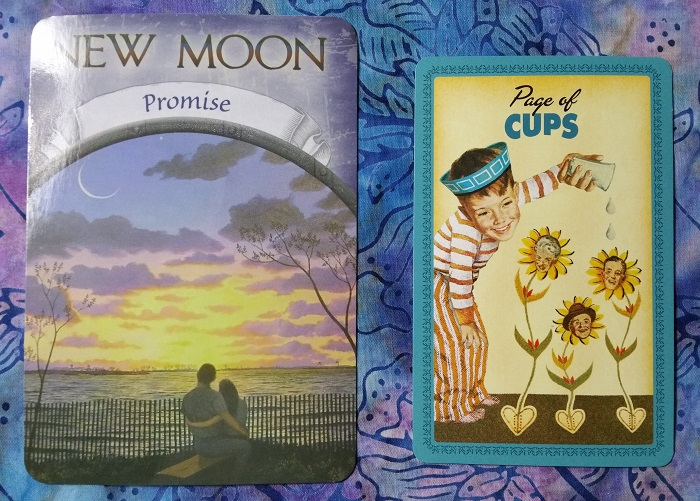 Energy Reading for Autumn 2018 : Cards: New Moon (Promise) from Earth Magic oracle deck and Page of Cups from The Housewives Tarot deck ~ Intuitive Ellen :: Ellen M. Gregg
