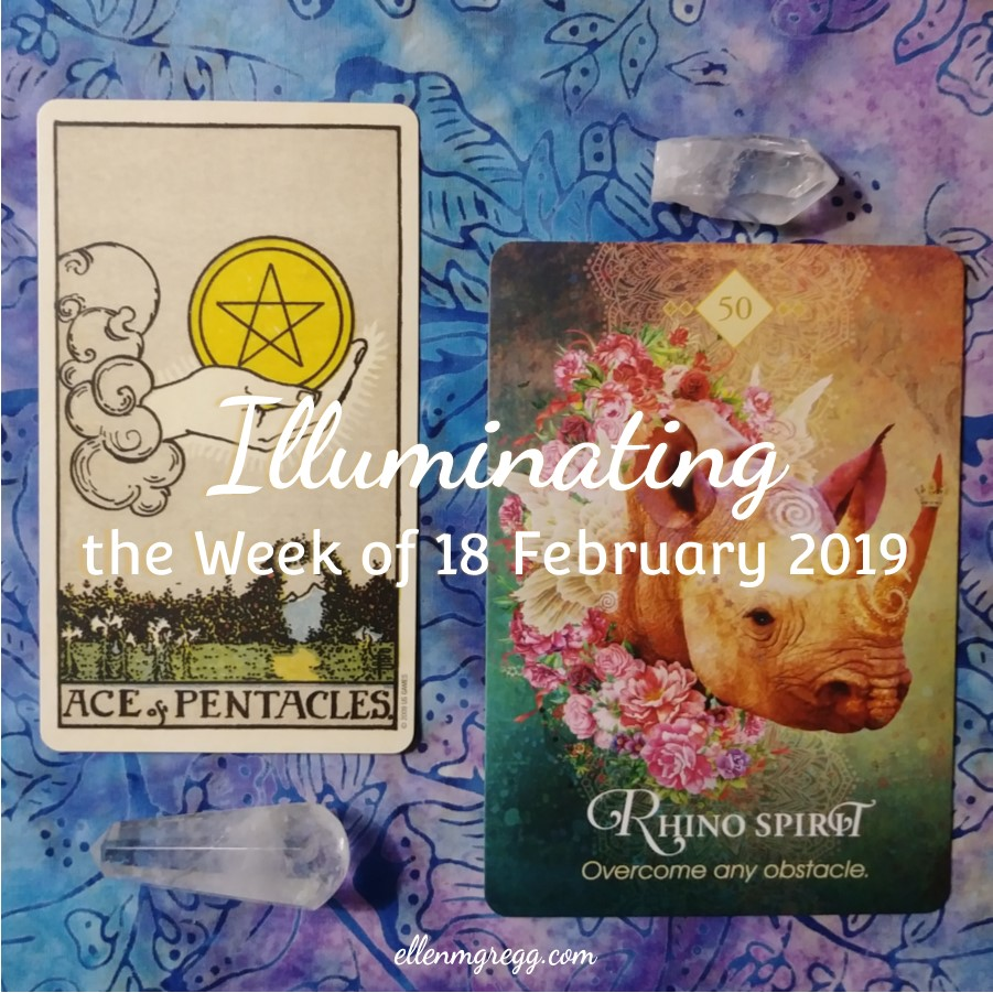 Illuminating the Week of 18 February 2019 ~ An intuitive energy reading by Ellen M. Gregg :: Intuitive ~ Ace of Pentacles from Smith-Waite Centennial Tarot and Rhino Spirit from The Spirit Animal Oracle