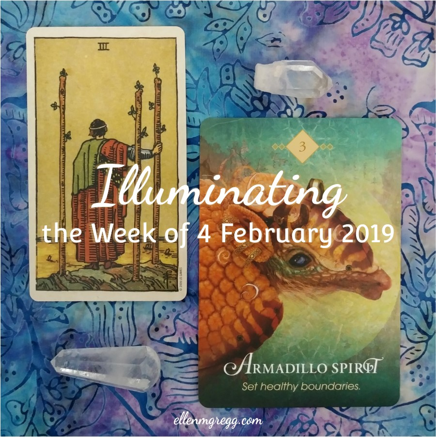 Illuminating the Week of 4 February 2019 ~ An intuitive energy reading by Ellen M. Gregg :: Intuitive ~ #threeofwands #smithwaitecentennialtarot #armadillospirit #theanimalspiritoracle #energyreading #intuitivereading