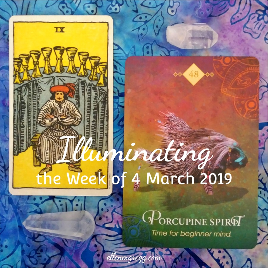 Illuminating the Week of 4 March 2019 ~ An intuitive energy reading by Ellen M. Gregg :: Intuitive ~ Nine of Cups from the Smith-Waite Centennial Tarot, and Porcupine Spirit from The Spirit Animal Oracle ~ #energyreading #intuitivereading #tarotreading #thesoulways