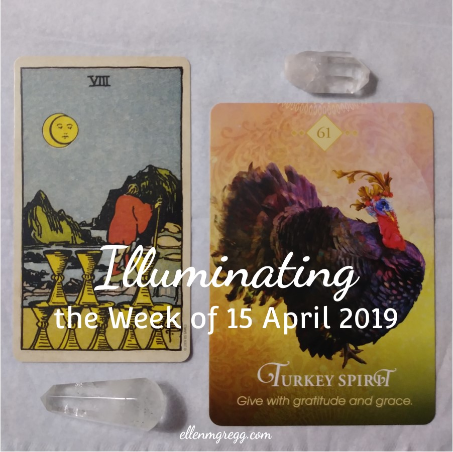 Illuminating the Week of 15 April 2019 ~ An intuitive card reading by Ellen M. Gregg :: Intuitive ~ Eight of Cups from Smith-Waite Centennial Tarot and Turkey Spirit from The Spirit Animal Oracle ~ #8ofcups #turkeyspirit #cardreading #intuitivereading #tarotreading #thesoulways