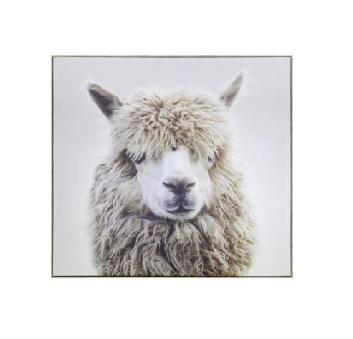 White Canvas Print Happy Llama 100x100cm Mello Evie