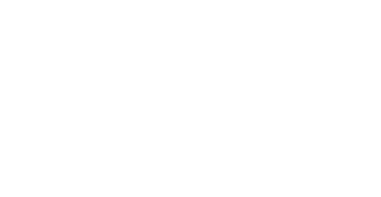 Picture This! Photography