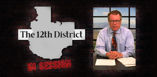 The-12th-District_page-graphic_In_Session.png