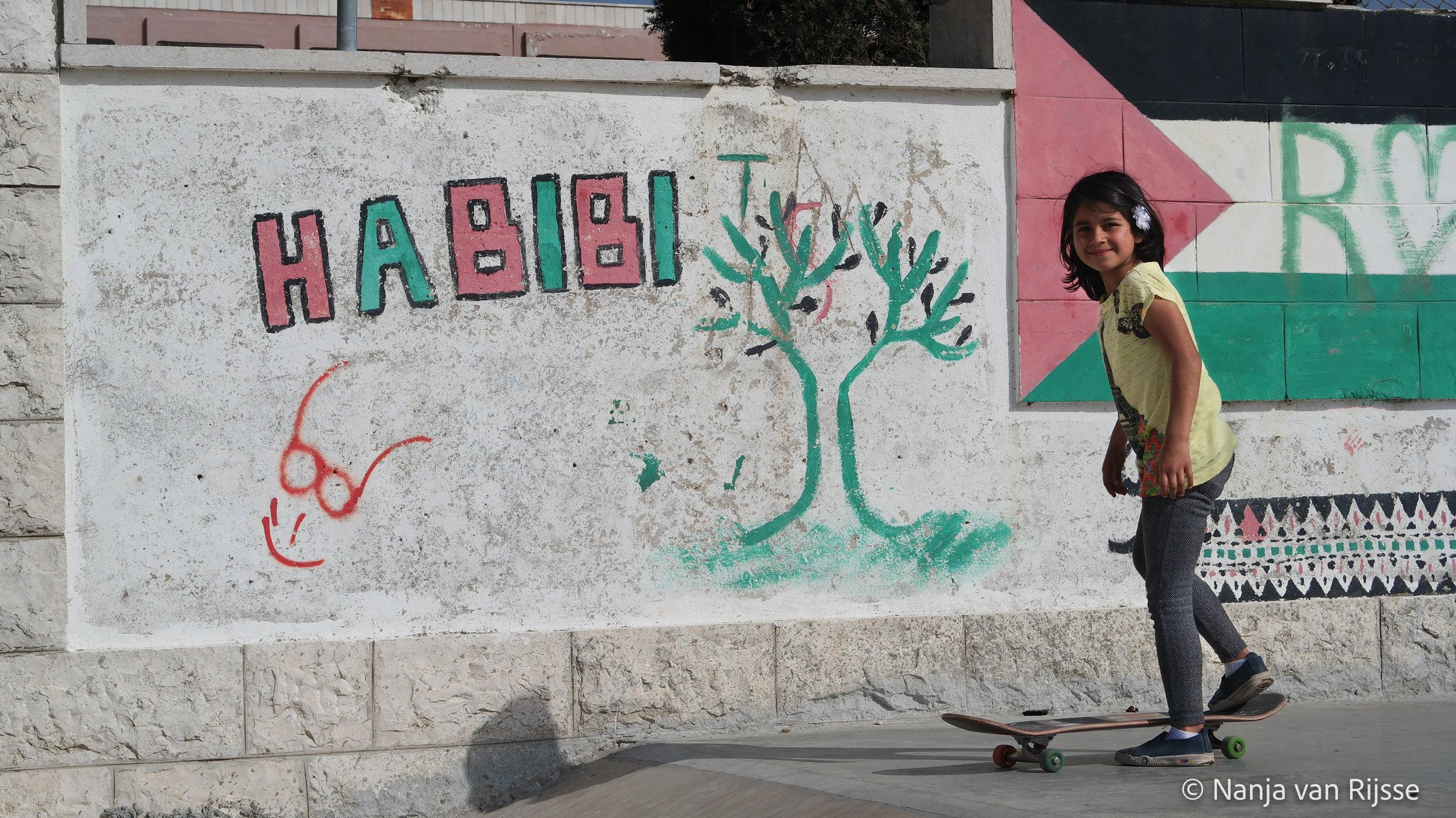 teaching skateboardlessons