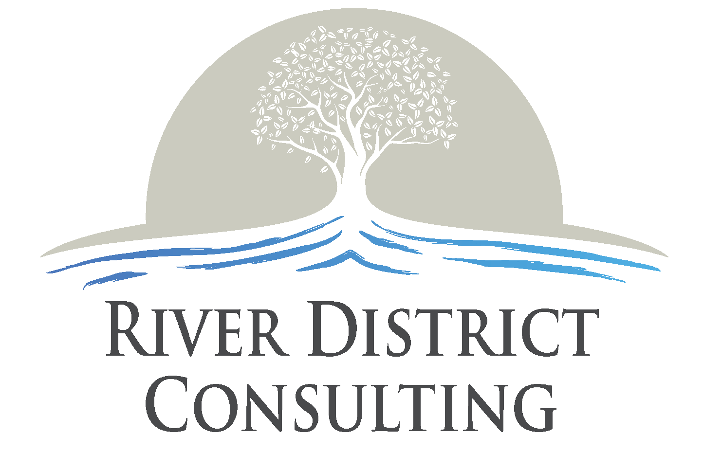 River District Consulting Group