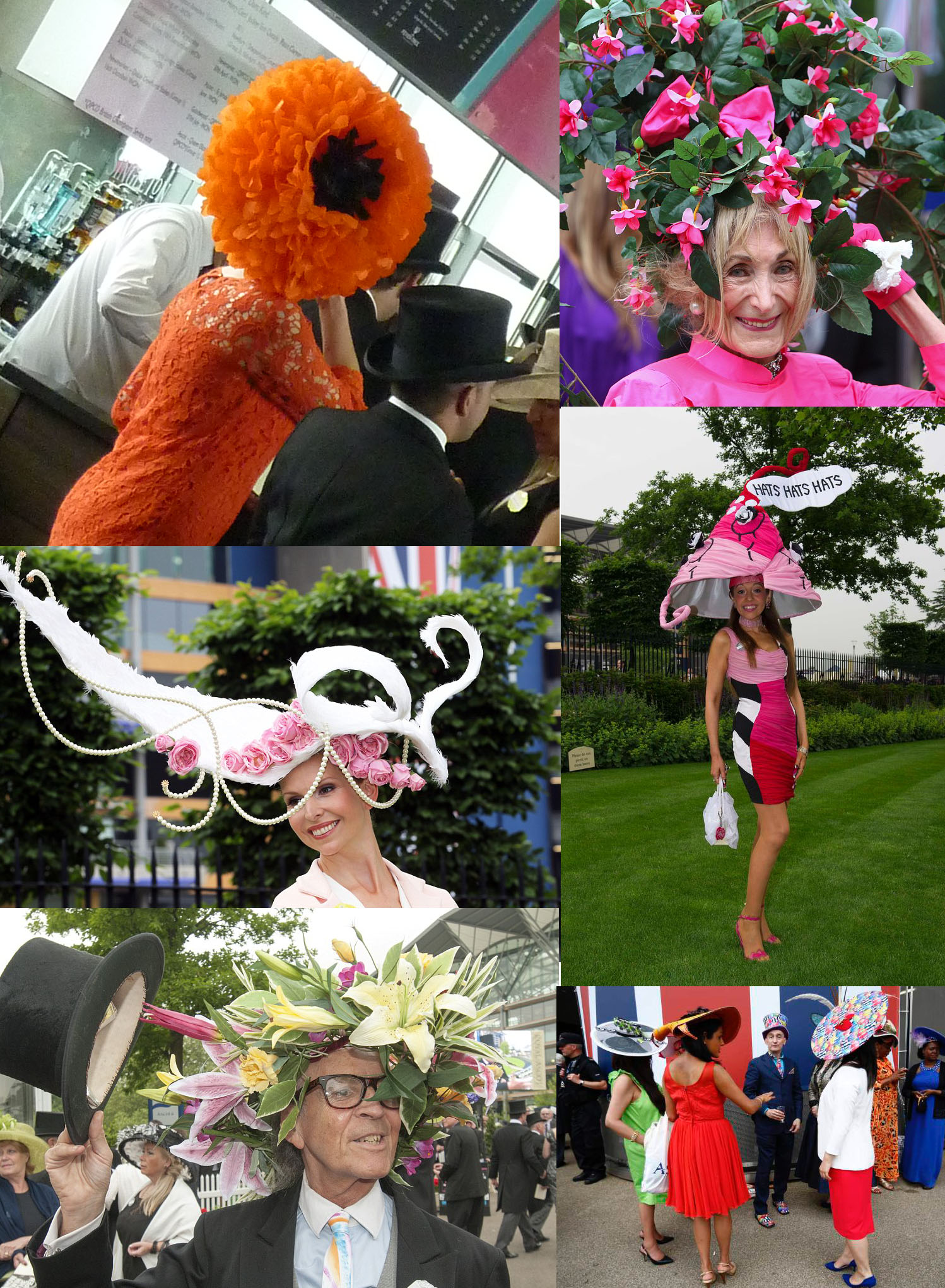 A selection of crazy millinery sported on Tuesday. Photos taken from Daily Mail, Metro and getreading.co.uk.