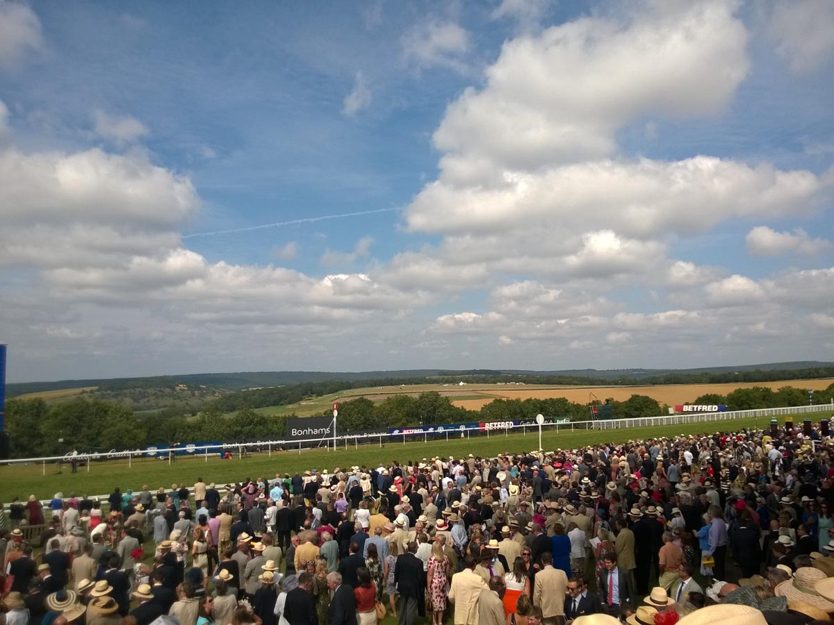 Goodwood racecourse in all its glory.