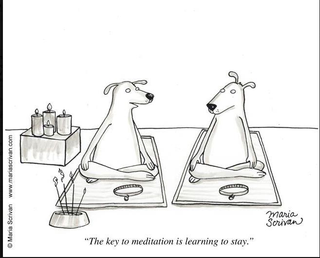 spiritual humor, humour, meditation