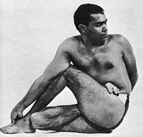 Image from: http://yoga108.org/pages/show/107-ardha-matsyendrasana-the-half-spinal-twist-yoga-posture