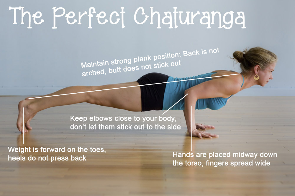 Picture from: http://blog.codyapp.com/codys-ultimate-guide-to-chaturanga/