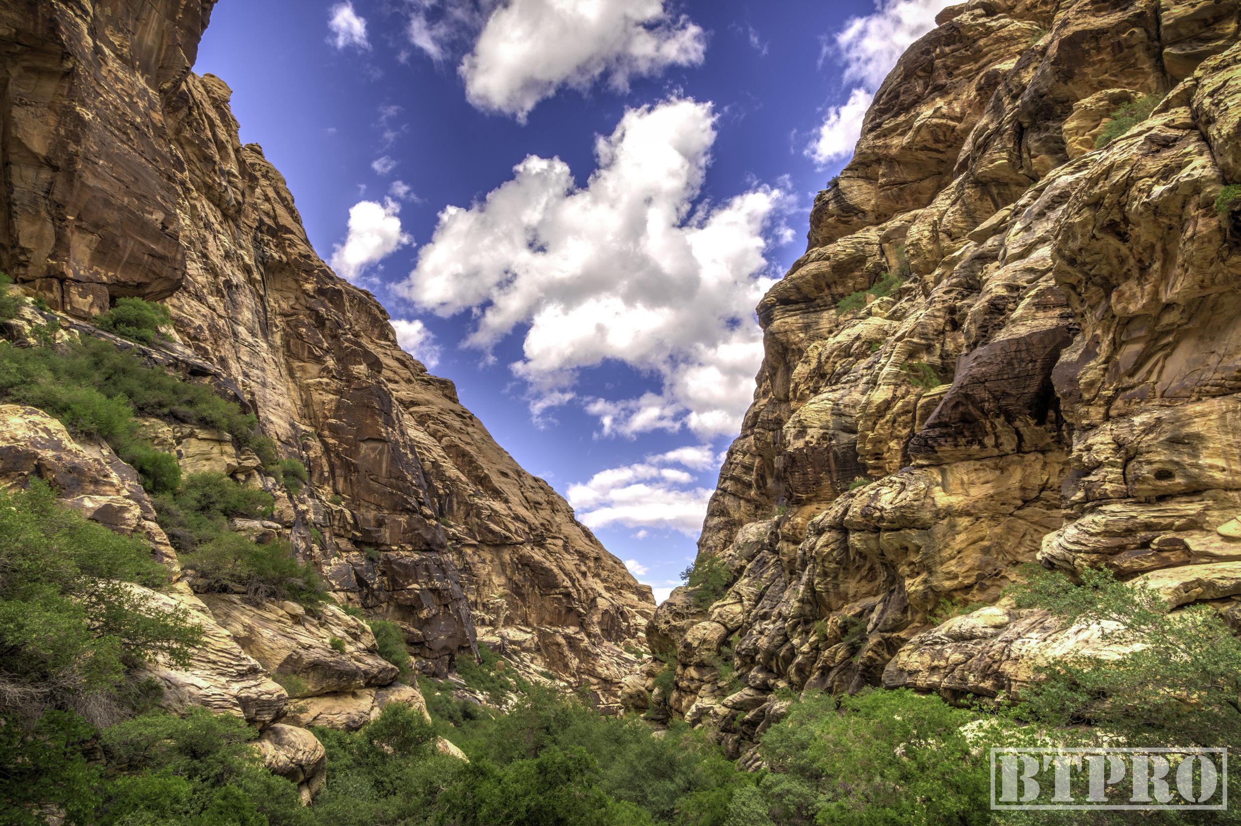 Red Rock Canyon WEB