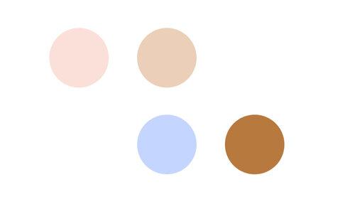 color+palette+lottie+made+co