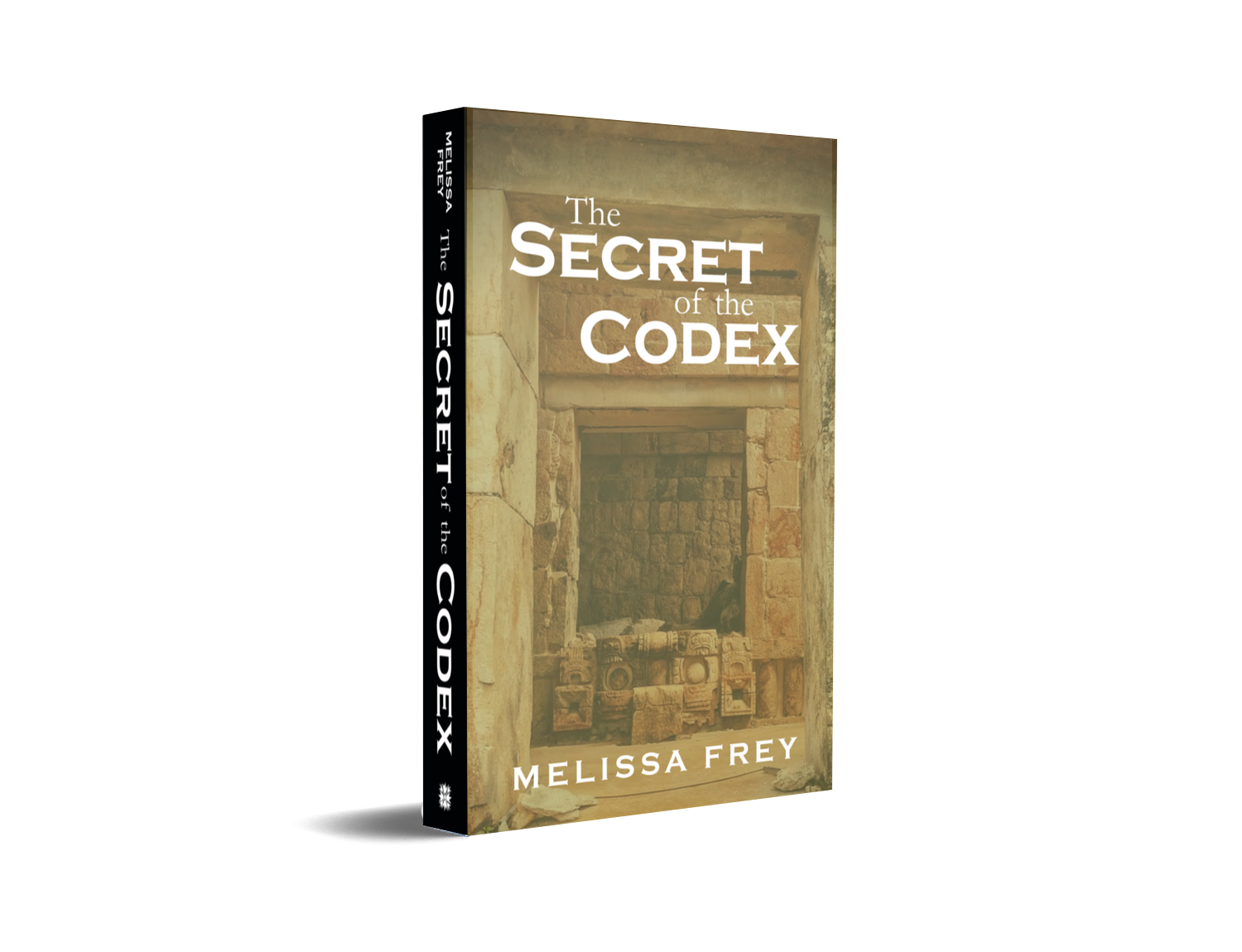 The Secret of the Codex Paperback Promo