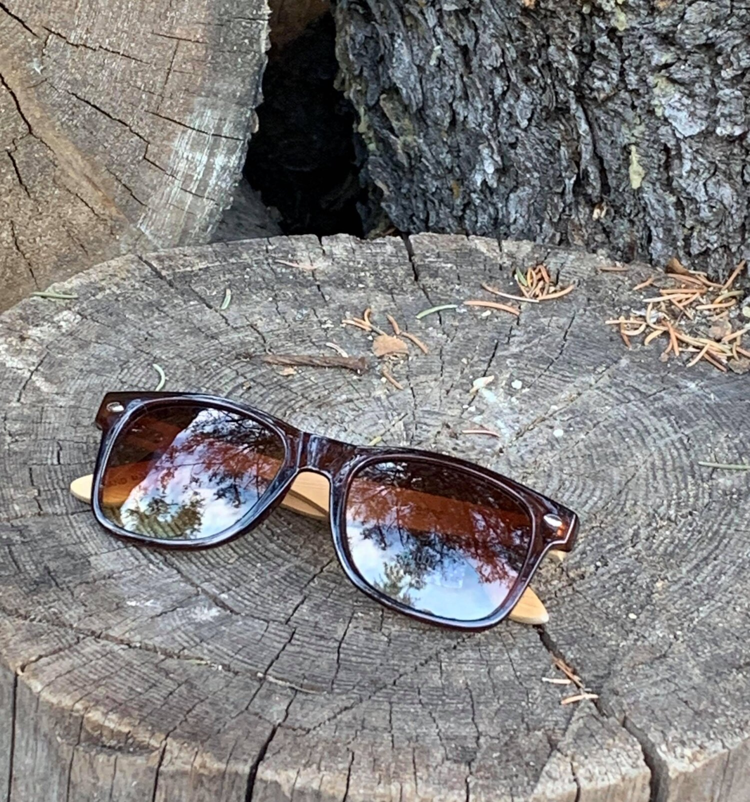 Brown Wayfarers with Bamboo Arms  The Last Temptation