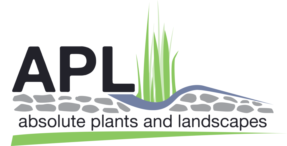 Absolute Plants And Landscapes