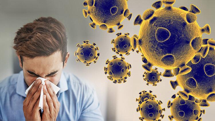 coronavirus-graphic-web-feature.jpg