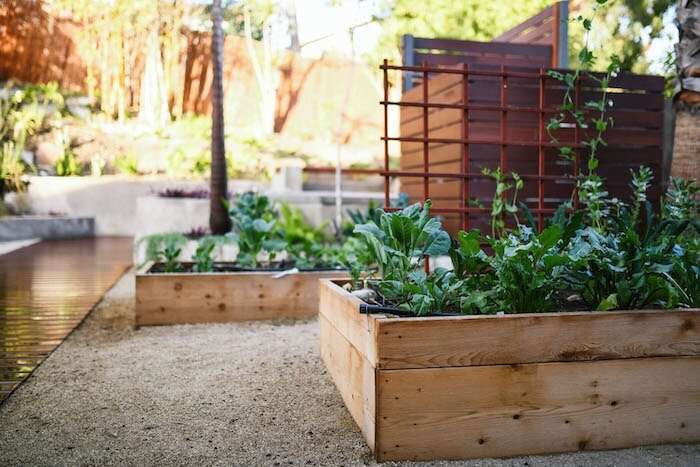 Herb Gardening For Beginners Deep Rooted Designs Your Site Title
