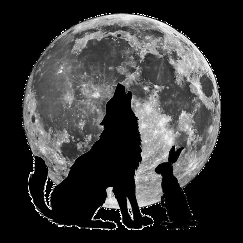 Stylists Wolf Rabbit Inc