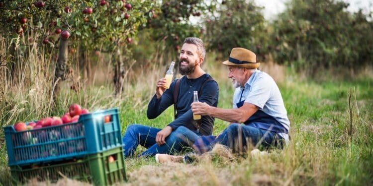 a-senior-man-with-adult-son-drinking-cider-in-appl-R2KJWHF-750x375.jpg