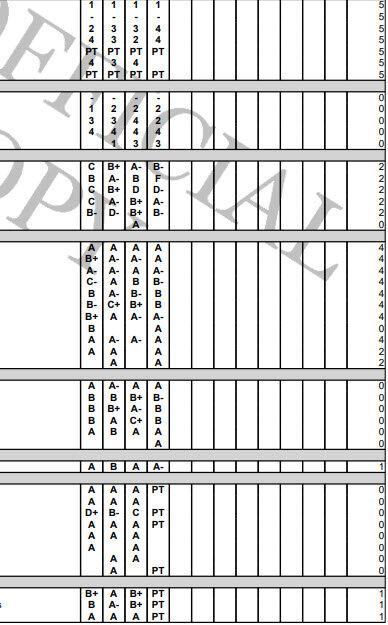 Matt's grades.jpg