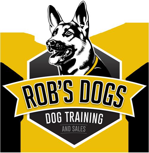 Rob's Dog training phoenix