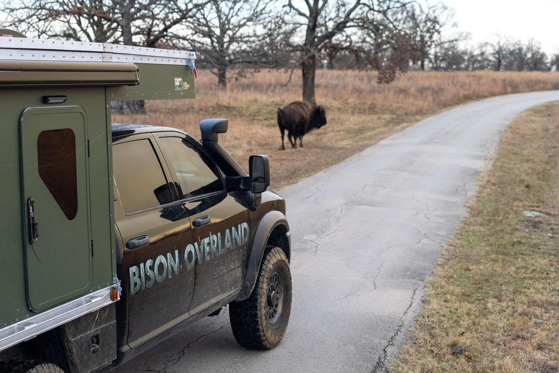 www.bisonoverlandcampers.com