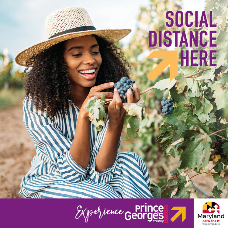 MDB Launches Ad Campaign Celebrating Social Distancing — MDB Communications