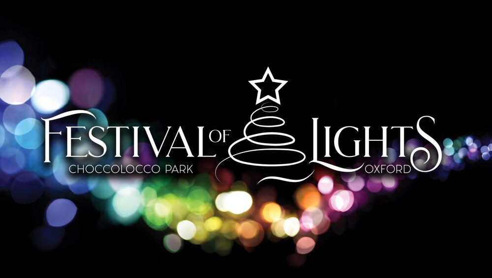 festival of lights prices