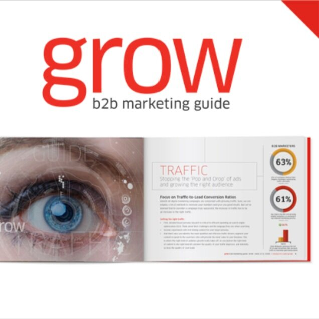 Grow | Annual B2B Marketing Guide