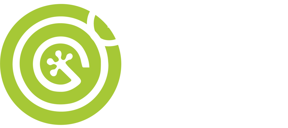 Picture of: Geco 1