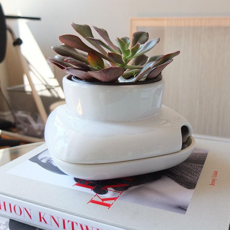 PlantPot5